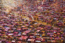 Pink Tibet